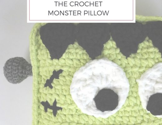 CROCHET MONSTER PILLOW